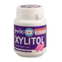 Lotte Xylitol Blueberry Mint Gum