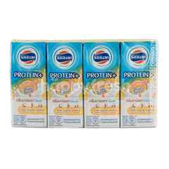 Foremost Protein+ UHT Milk Whey & Casein Plain Flavour Pack