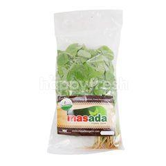 Masada Organic Spinach