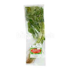 Wado Organic Green Spinach