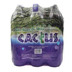 Cactus Natural Mineral Water (6 Pieces)