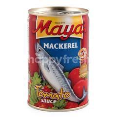 Maya Mackerel