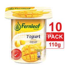 FERNLEAF Manggo Flavoured Yogurt 10 Pack