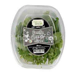 Fresh Deli Rocket Salad