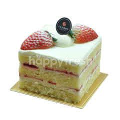 Strawberry Shortcake (S)