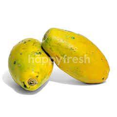 UM Papaya