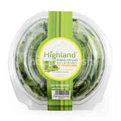 Highland Juicing Greens Kale dan Bayam