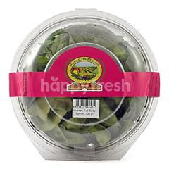 Hussey & Co Baby Spinach