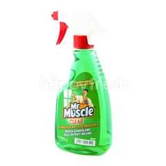 Mr. Muscle Glass Cleaner