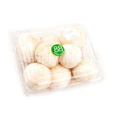 88 Champignon Mushroom