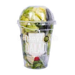 Amazing Farm Shake Salad! Mexican Shake