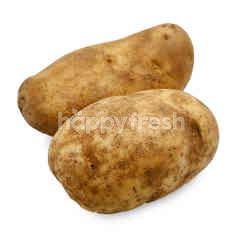 Potato Russet US