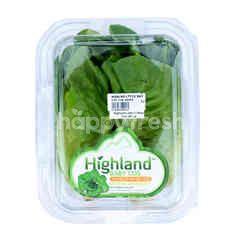 Highland Baby Cos
