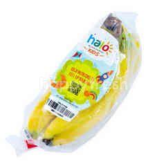Halo Kids Cavendish Banana