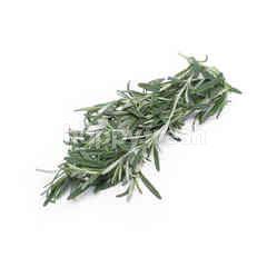Qp Premium Rosemary