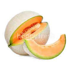 Japanese Cantaloupe Melon