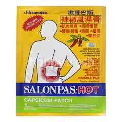 Hisamitsu Salonpas-Hot