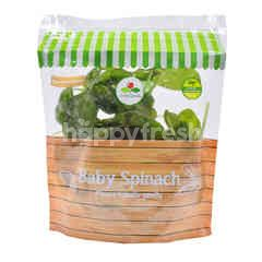 Australian Baby Spinach