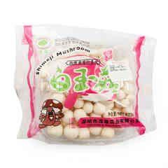 Mao Xiong White Hon Shimeji Mushroom