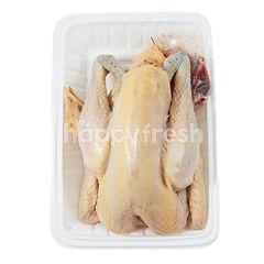 Natural Poultry Ayam Kampung Utuh (~0.695kg)