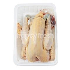 Natural Poultry Whole Kampong Chicken (~0.695kg)