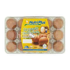 NUTRI PLUS Nutriplus Eggs