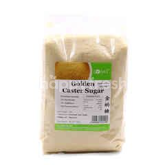 LOHAS Golden Caster Baking Sugar