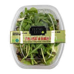Fresh Deli Premium Salad Kits Free Dressing