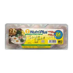 NUTRI PLUS Fresh Eggs With Organic Selenium