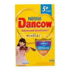 Dancow Excel+ Powdered Chocolate Milk 5+