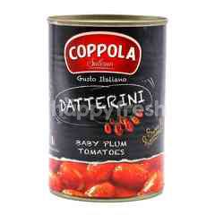 Coppola Salerno Datterini Sweet & Flavourful Baby Plum Tomatoes