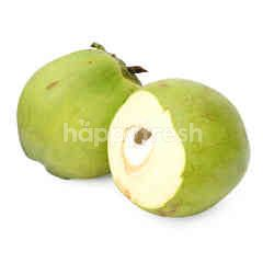 Green Young Coconut