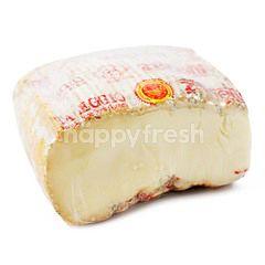 Tellegio Cheese