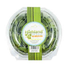 Highland Baby Spinach