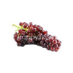 US Red Grape