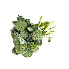 China Broccoli
