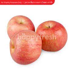 ฟูจิ แอปเปิ้ล