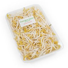 Moyashi Fresh Bean Sprout Type B