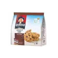 Quaker Oat Cookies With Chocolate Chips