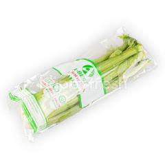 A-Best Celery