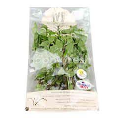 Wb Organic Mint