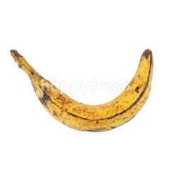 Tanduk Banana