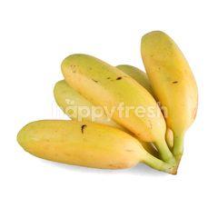โฮม เฟรช มาร์ท กล้วยไข่