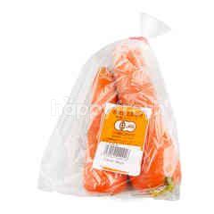 Carrot Ninjin