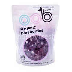 Organic Blueberries Frozen Fruit
