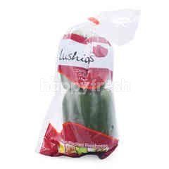 LUSHIOUS Green Capsicum
