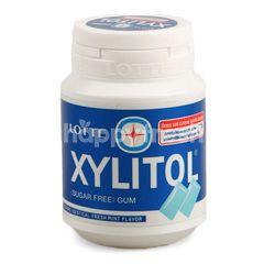 Lotte Xylitol Fresh Mint Gum