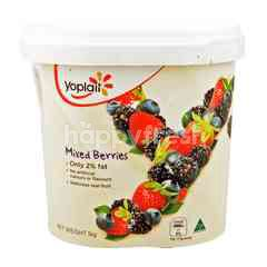 Yoplait Yoghurt With Mixed Berries