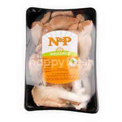 Natural & Premium Food Organic Mushroom