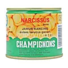 Narcissus Champignons in Brine